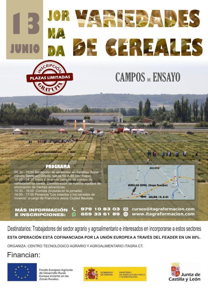 Jornada sobre variedades de cereales en campos de ensayo